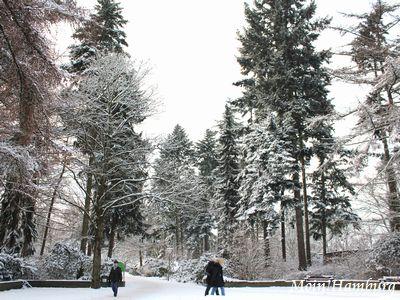 冬のシュタットパーク