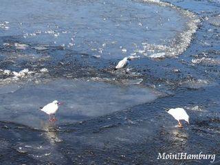 3月の内アルスター湖